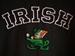 Picture of McKay's Fighting Irish Hooded Sweatshirt (SB010)