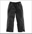 Picture of Carhartt Men's WorkFlex Pant (B204)